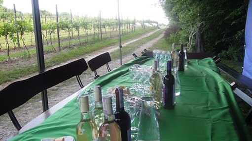 Stół z widokiem na winnicę