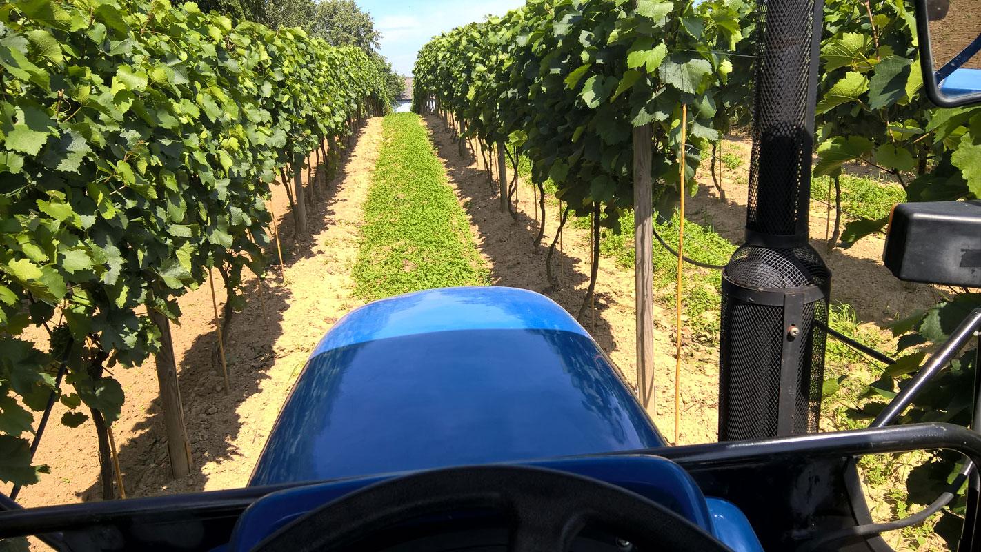 Widok z traktora w czasie pracy