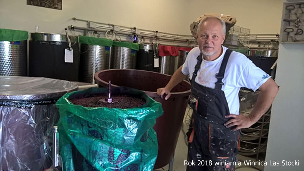 Winiarnia w Lasie Stockim w roku 2018